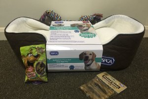 Competition to win a dog bed